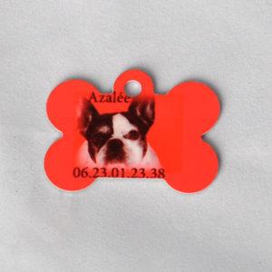 Plaque identifiant chien