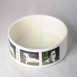 Gamelle pour chien ou chat en céramique